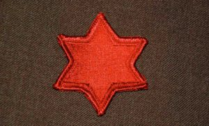 6th infantry cloth star